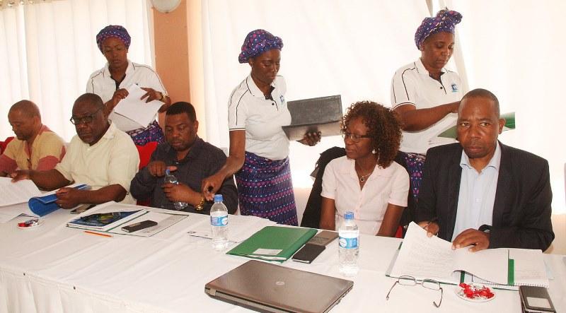 Participantes na Senssão do Conselho de Administração alargada do INSS 3